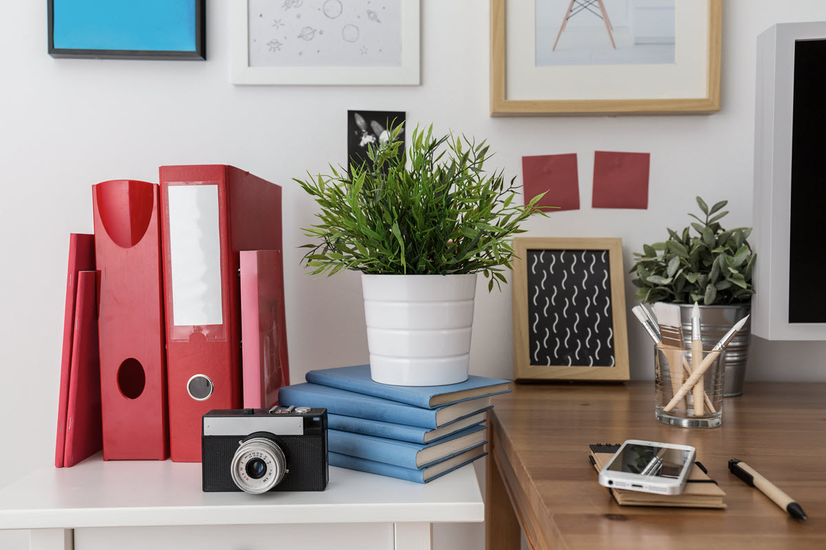 An organized room with pictures, folders, plant, brushes