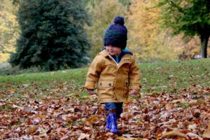 Little boy in blue gumboots walking in fallen leaves