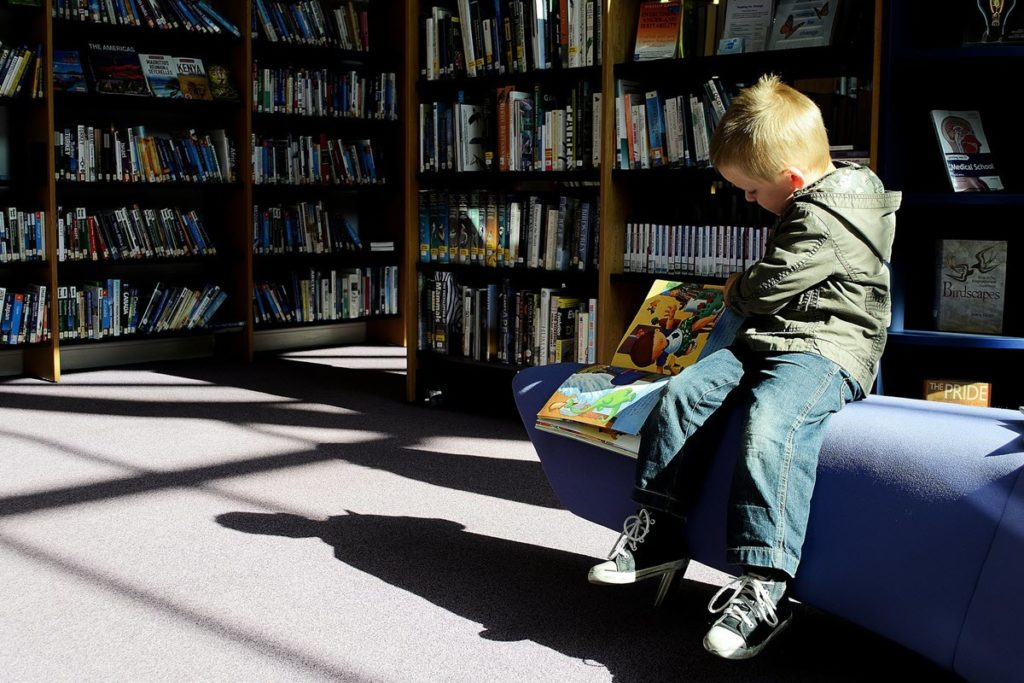 Young preschooler boy in library looking at a picture book